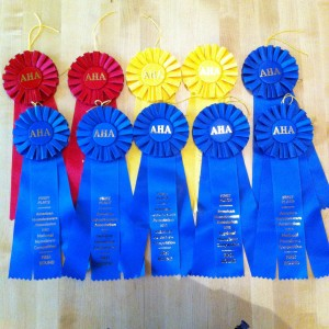 2012 NHC Ribbons